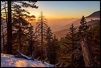 Looking down Valley of the Falls, winter sunset. Sand to Snow National Monument, California, USA ( )