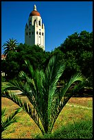 Hoover tower. Stanford University, California, USA