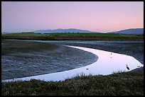 Wetlands at dusk, Palo Alto Baylands Preserve. Palo Alto,  California, USA ( color)