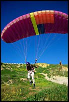 Paraglider launching, the Dumps, Pacifica. San Mateo County, California, USA (color)