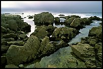 Pool, rocks, foggy sunset, seventeen-mile drive. Pebble Beach, California, USA