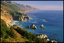 Costline from Partington Point, Julia Pfeiffer Burns State Park, late afternoon. Big Sur, California, USA