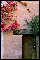 Flowers and wall, Carmel Mission. Carmel-by-the-Sea, California, USA ( color)