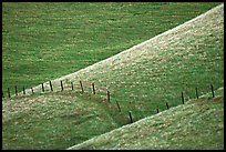 Fence on hill, Southern Sierra Foothills. California, USA