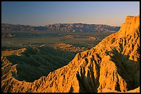 Pictures of Anza Borrego Desert