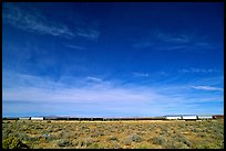 Long train in the Mojave desert. California, USA ( color)