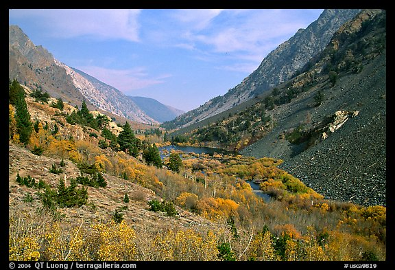 Valley with fall colors, Lundy Canyon, Inyo National Forest. California, USA