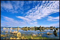 Clouds and Tufa towers, morning. Mono Lake, California, USA ( color)