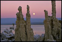 Tufa towers and moonrise, dusk. Mono Lake, California, USA ( color)