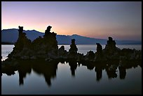Tufa towers, dusk. Mono Lake, California, USA ( color)