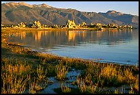 Grasses, tufa, and mountains, early morning. Mono Lake, California, USA (color)