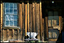 Window and wall, Ghost Town, Bodie State Park. California, USA (color)