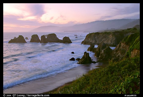 Coast with sea stacks near Rockport. California, USA