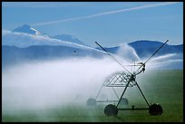 Irrigation machine and Mt Shasta. California, USA (color)