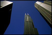 Upwards view of sears tower framed by other skyscrappers. Chicago, Illinois, USA (color)