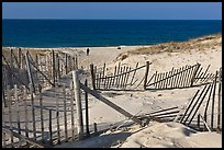 Sand Fence, tourist, and ocean late afternoon, Cape Cod National Seashore. Cape Cod, Massachussets, USA