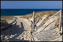 Path to beach and ocean framed by sand fences, Cape Cod National Seashore. Cape Cod, Massachussets, USA
