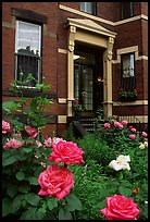 Flowers and brick houses on Beacon Hill. Boston, Massachussets, USA (color)