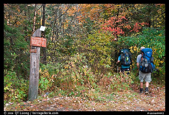 Backpackers hiking into autumn woods at Appalachian trail marker. Maine, USA