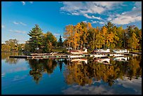 Seaplanes and autumn foliage, West Cove, late afternoon, Greenville. Maine, USA