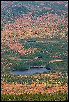 Elevated view of Whidden ponds surrounded by forest in fall foliage. Baxter State Park, Maine, USA ( color)