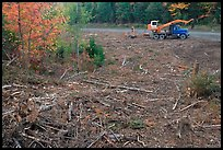Deforested area and forestry truck and trailer. Maine, USA ( color)