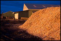 Sawdust in lumber mill at night, Ashland. Maine, USA ( color)