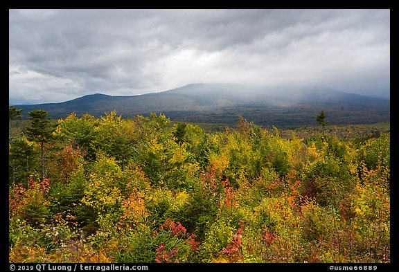 Northern hardwood forest in autumn foliage and cloud-capped Katahdin. Katahdin Woods and Waters National Monument, Maine, USA (color)