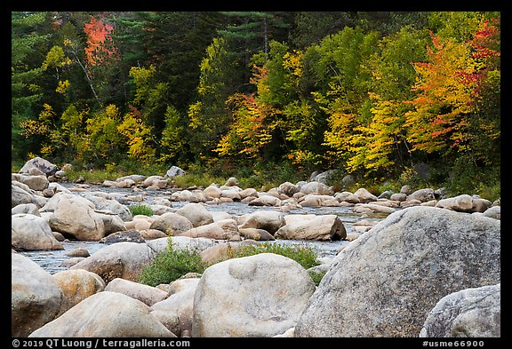 Huge boulders and Wassatotaquoik Stream in autumn. Katahdin Woods and Waters National Monument, Maine, USA (color)