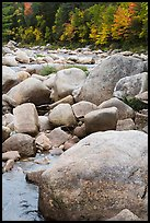 Boulders and Wassatotaquoik Stream in the fall. Katahdin Woods and Waters National Monument, Maine, USA ( )