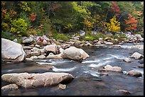 Wassatotaquoik Stream in autumn. Katahdin Woods and Waters National Monument, Maine, USA ( )