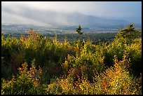 View from Loop Road Overlook over mountain hidden by clouds. Katahdin Woods and Waters National Monument, Maine, USA ( )