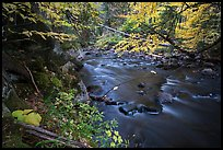 Katahdin Brook in autunm. Katahdin Woods and Waters National Monument, Maine, USA ( color)