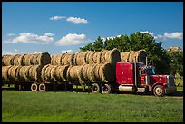 Truck loaded with hay rolls, Medora. North Dakota, USA ( color)