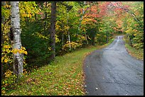 Rural road in autumn, White Mountain National Forest. New Hampshire, USA ( color)