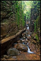 Flume Gorge, Franconia Notch State Park. New Hampshire, USA ( color)
