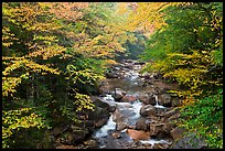 Cascades of the Pemigewasset River in fall, Franconia Notch State Park. New Hampshire, USA ( color)