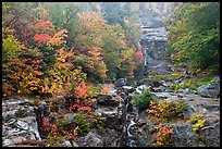 Cascading waterfall and autumn colors, Crawford Notch State Park. New Hampshire, USA ( color)