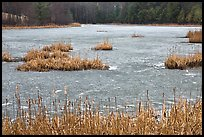 Frozen pond. Walpole, New Hampshire, USA