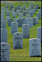 Rows of tombs, Black Hills National Cemetery. Black Hills, South Dakota, USA