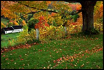 Peacham. Vermont, New England, USA ( color)