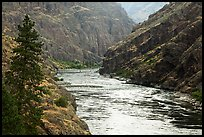 Wild portion of Snake River. Hells Canyon National Recreation Area, Idaho and Oregon, USA ( color)