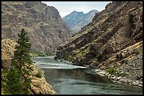 High cliffs above free-flowing part of Snake River. Hells Canyon National Recreation Area, Idaho and Oregon, USA ( color)