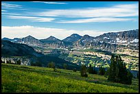 Meadows and mountains, Face Trail. Jedediah Smith Wilderness,  Caribou-Targhee National Forest, Idaho, USA ( color)