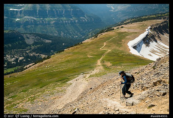 Hiker descending Table Mountain Trail. Jedediah Smith Wilderness,  Caribou-Targhee National Forest, Idaho, USA (color)
