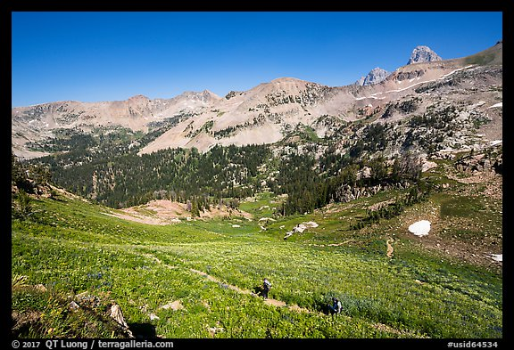 Hikers on Huckleberry Trail. Jedediah Smith Wilderness,  Caribou-Targhee National Forest, Idaho, USA (color)