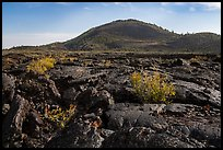 Lava flow and Big Cinder Butte. Craters of the Moon National Monument and Preserve, Idaho, USA ( )