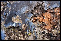Close-up of cracked lava with blue tints of the Blue Dragon flow. Craters of the Moon National Monument and Preserve, Idaho, USA ( )