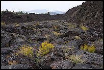 Lava flow near Broken Top. Craters of the Moon National Monument and Preserve, Idaho, USA ( )