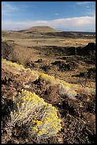 Sagebrush in bloom and Crescent Butte from Echo Crater. Craters of the Moon National Monument and Preserve, Idaho, USA ( )